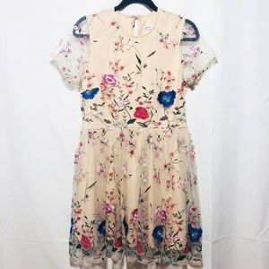 Dainty hooligan embroidered floral dress large